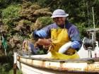 Fisherman Source:HazelIsles