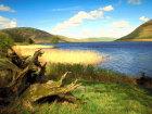 Landscape of St Marys Loch, Scotland Source:© Britainonview / - Britain on View