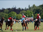 Polo at Guard's Club Source:© blueskyman123 (Flickr)